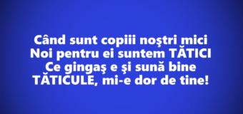 Dor de tata – Marin Sorescu
