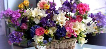 Știai de ce? – De ce bărbații le oferă flori femeilor?