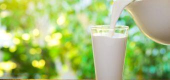 Paharul cu lapte
