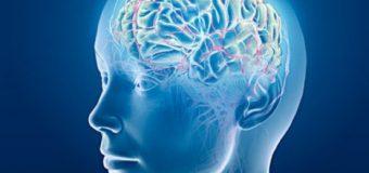 Un test care verifica varsta creierului: daca este egala cu varsta …corpului sau… mai in varsta!!!